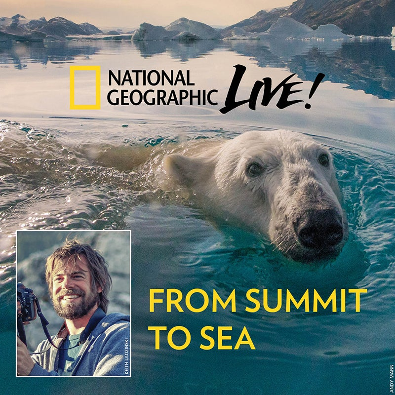 More Info for Andy Mann: From Summit to Sea
